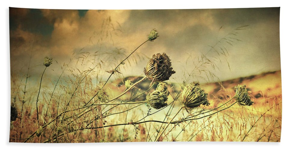Fine Art Hand Towel featuring the photograph Sad Song Of The Wind by Zapista