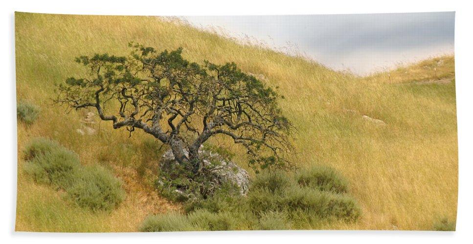 Landscape Bath Towel featuring the photograph Sage Under Oak by Karen W Meyer