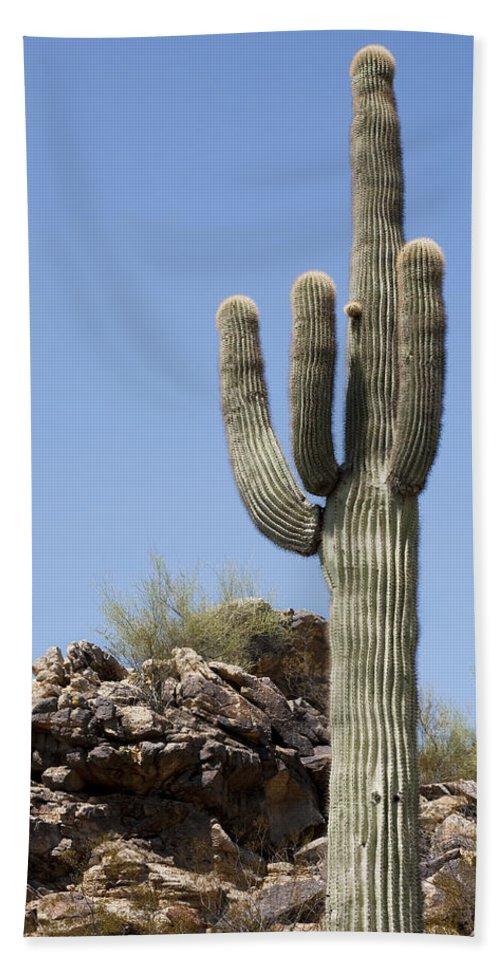 Saguaro Bath Sheet featuring the photograph Saguaro 3 by Kelley King