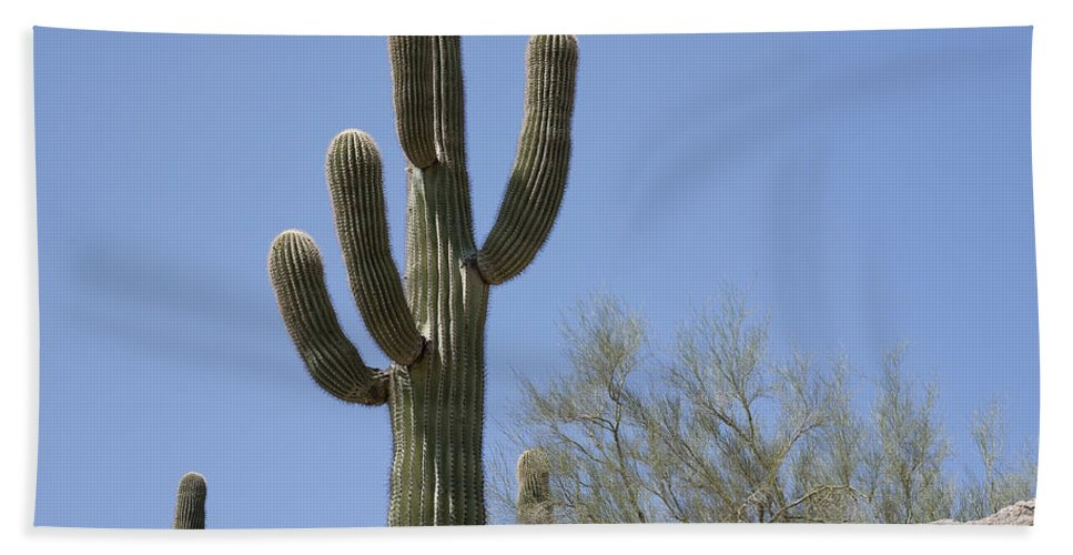 Saguaro Bath Sheet featuring the photograph Saguaro 6 by Kelley King