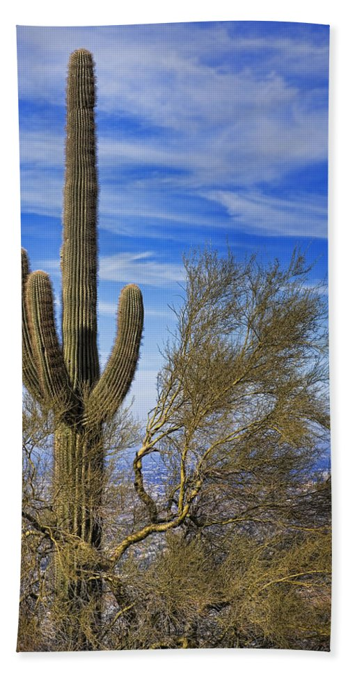 Saguaro Bath Sheet featuring the photograph Saguaro Cactus Of The Desert Southwest by Kelley King