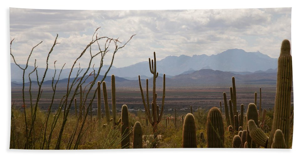 Saguaro Bath Sheet featuring the photograph Saguaro National Park Az by Susanne Van Hulst