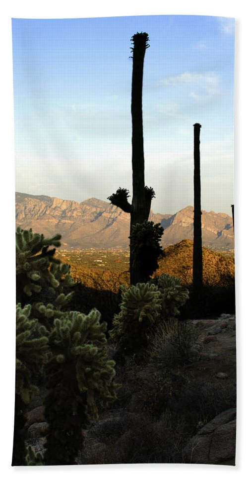 Saguaro Bath Towel featuring the photograph Saguaro Silhouette by Jill Reger