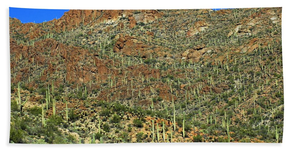 Tucson Hand Towel featuring the photograph Saguaros by Teresa Stallings