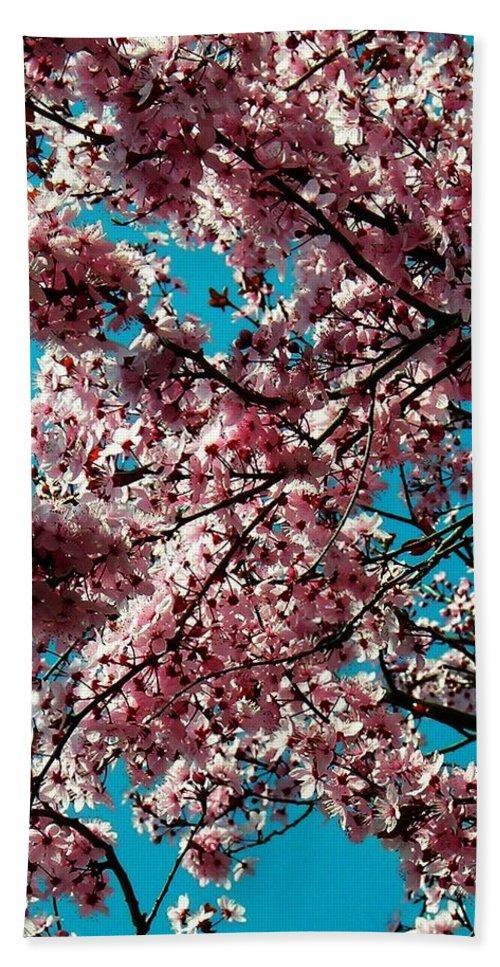 Fruehling Bath Sheet featuring the photograph Sakura by Juergen Weiss