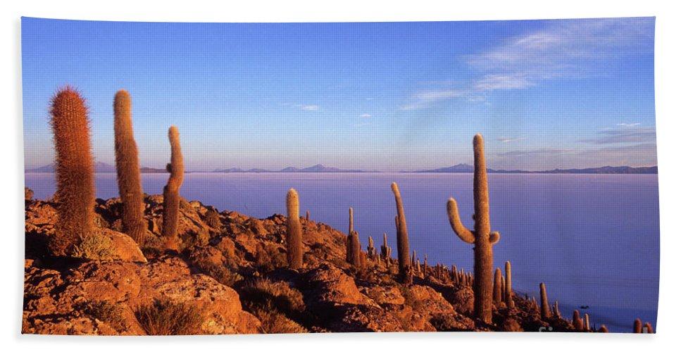 Bolivia Bath Sheet featuring the photograph Salar De Uyuni And Cacti At Sunrise by James Brunker