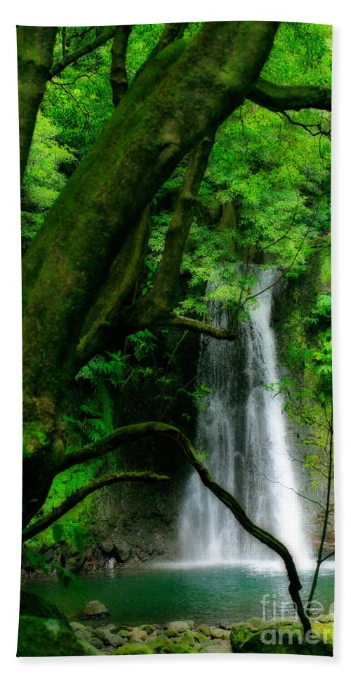 Environment Hand Towel featuring the photograph Salto Do Prego Waterfall by Gaspar Avila