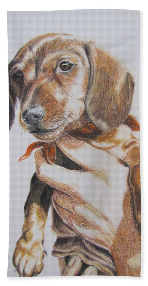 Puppy Bath Towel featuring the drawing Sambo by Karen Ilari