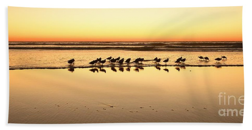 Landscapes Hand Towel featuring the photograph San Diego Shorebirds by John F Tsumas
