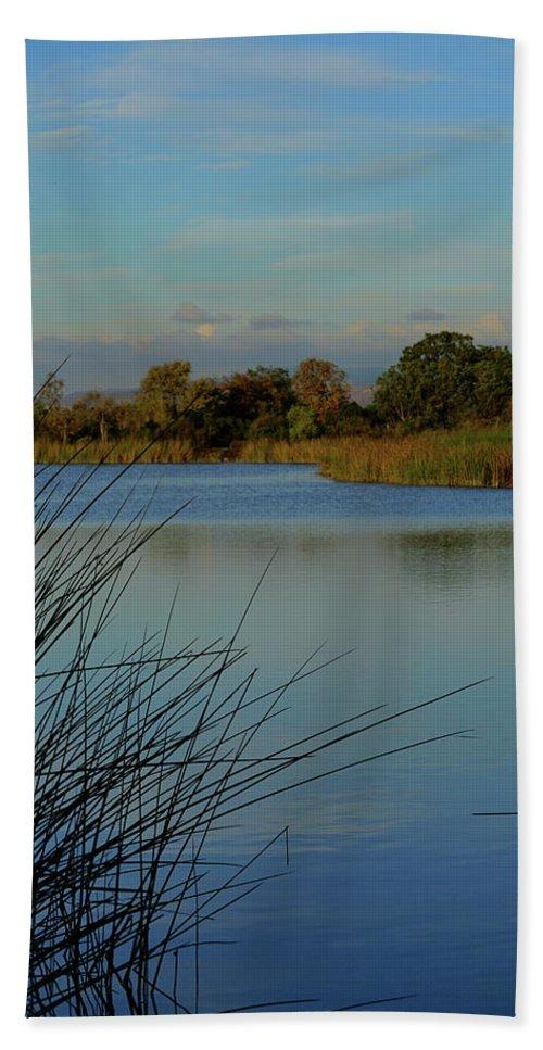 San Joaquin Wildlife Sanctuary Bath Sheet featuring the photograph San Joaquin Wildlife Sanctuary by Richard Stephen