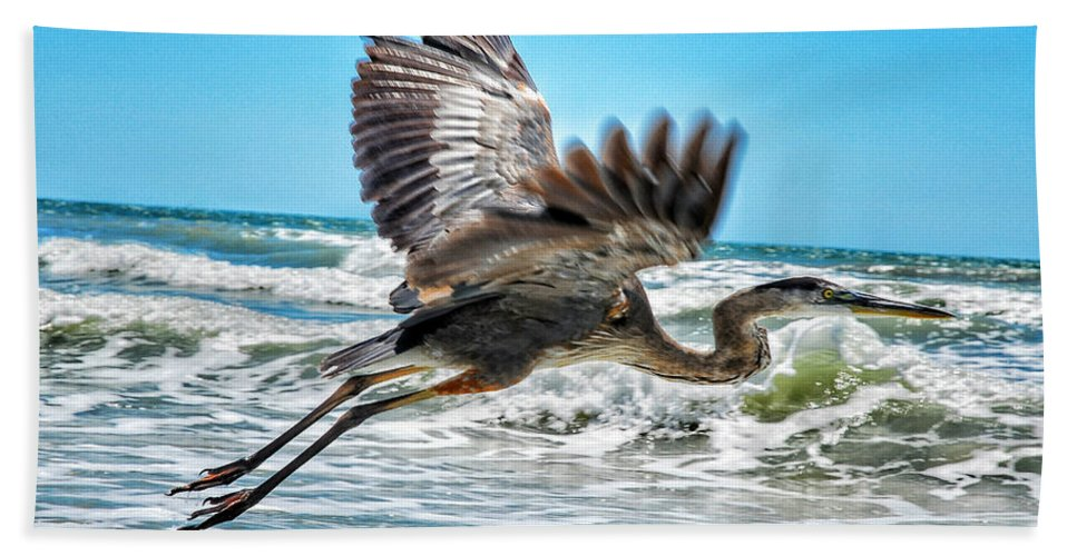 Animals Hand Towel featuring the photograph Sand Crane by Allen Williamson