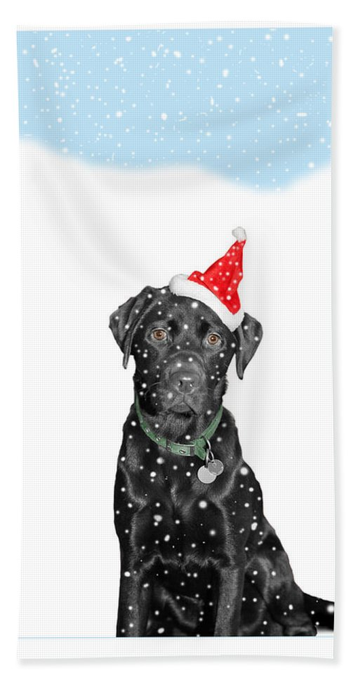 Christmas Bath Sheet featuring the photograph Santa Dog In The Snow by Mal Bray