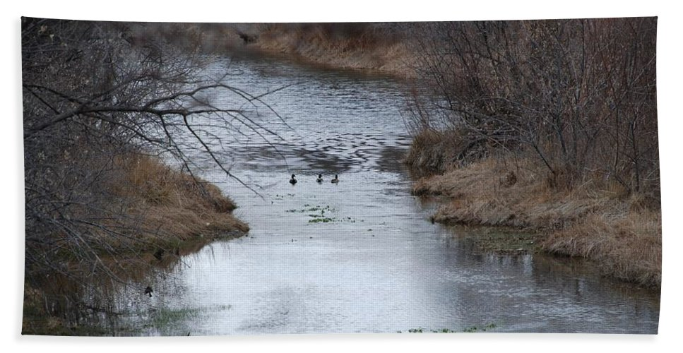 Birds Bath Towel featuring the photograph Sante Fe River by Rob Hans