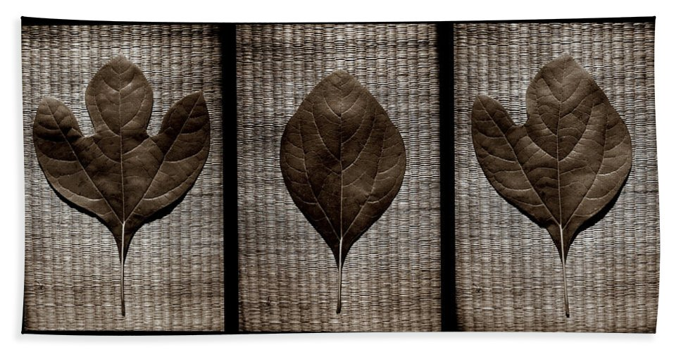 Sassafras Bath Sheet featuring the photograph Sassafras Leaves With Wicker by Michelle Calkins