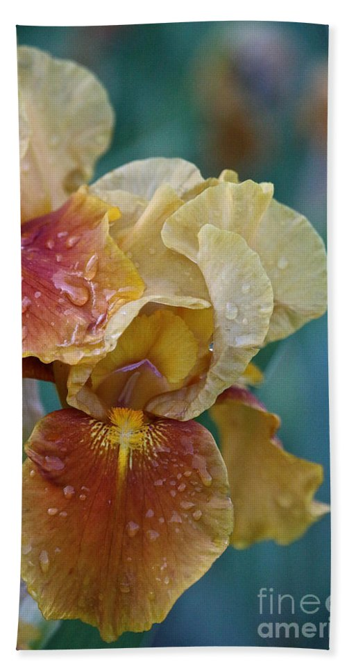 Flower Hand Towel featuring the photograph Saturated Iris by Susan Herber