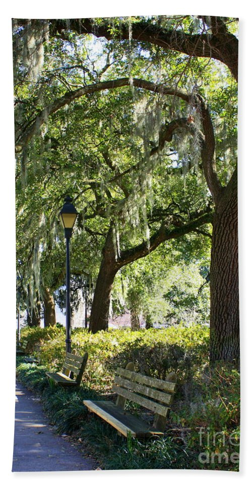 Parks Hand Towel featuring the photograph Savannah Benches by Carol Groenen