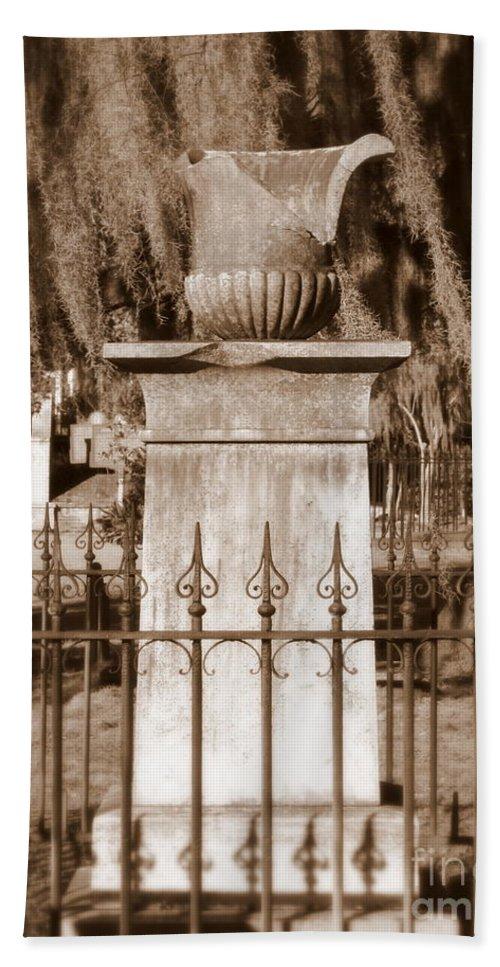 Savannah Hand Towel featuring the photograph Savannah Sepia - Broken by Carol Groenen