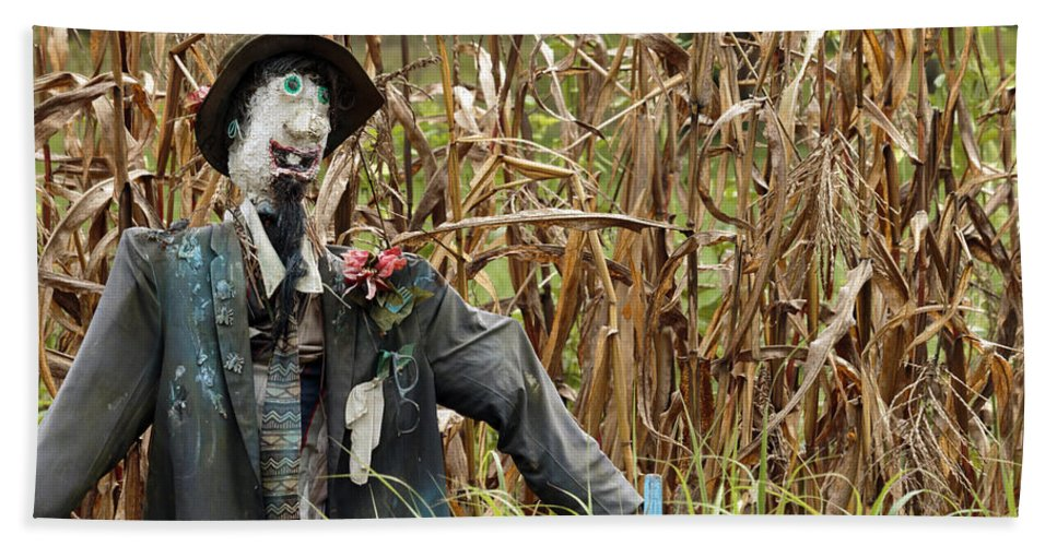 Autumn Hand Towel featuring the photograph Scarecrow by Travis Rogers
