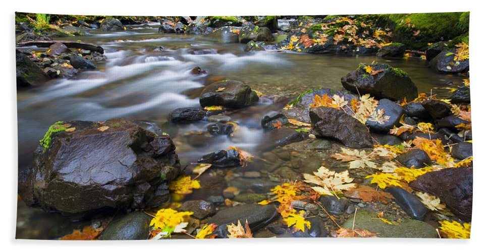 Leaves Bath Sheet featuring the photograph Scattered About by Mike Dawson