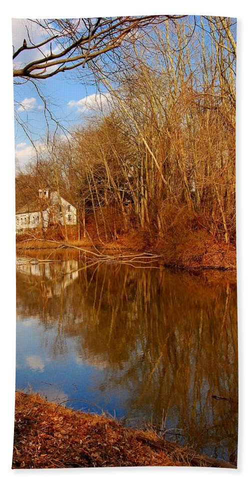 New Jersey Hand Towel featuring the photograph Scene In The Forest - Allaire State Park by Angie Tirado