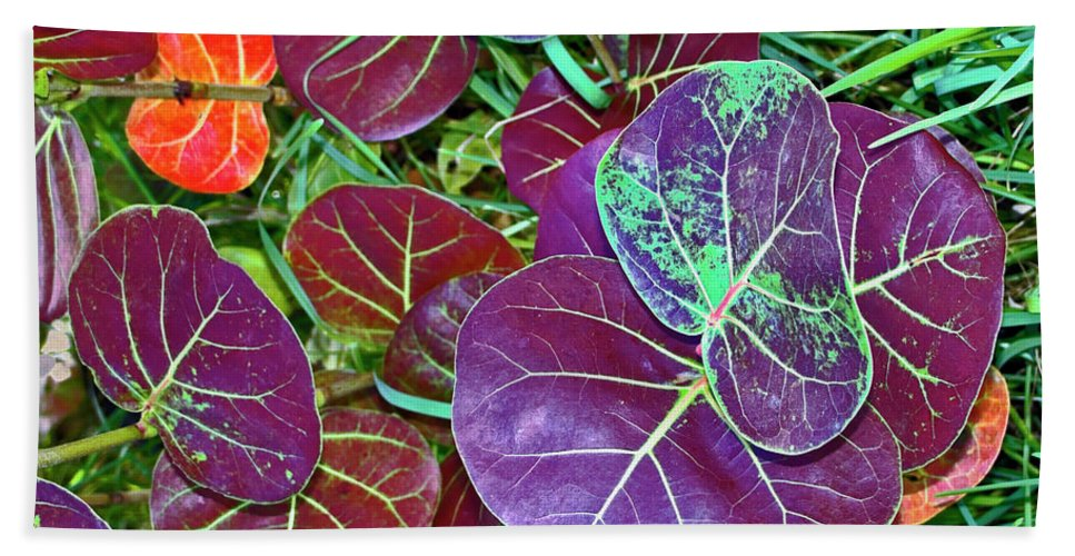 Large Maroon Leaves Hand Towel featuring the photograph Sea Grape by Sally Weigand