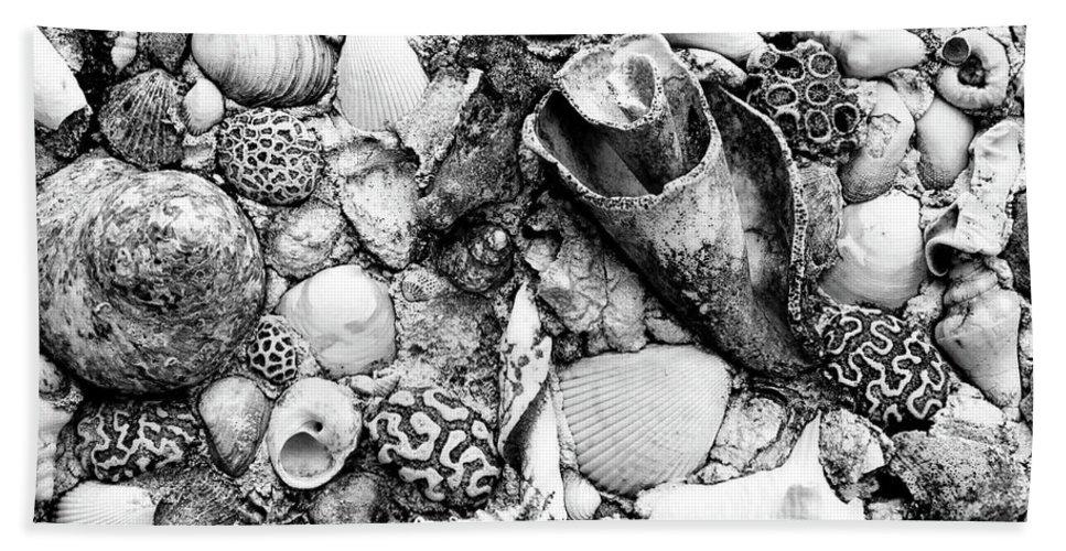 Nassau Bath Sheet featuring the photograph Sea Shells - Nassau, Bahamas by Timothy Wildey