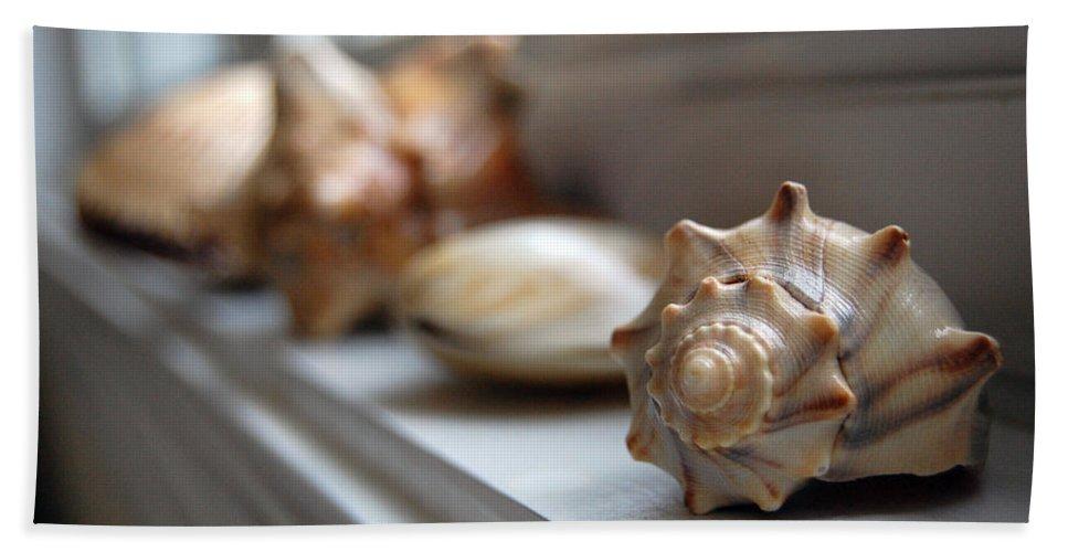 Seashells Bath Towel featuring the photograph Sea Shells by Robert Meanor