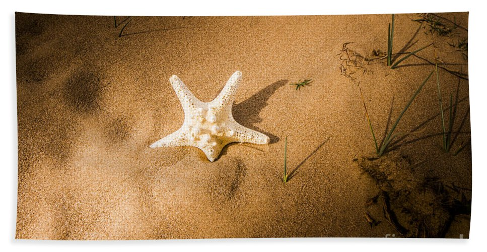 Marine Hand Towel featuring the photograph Sea Star Scene by Jorgo Photography - Wall Art Gallery
