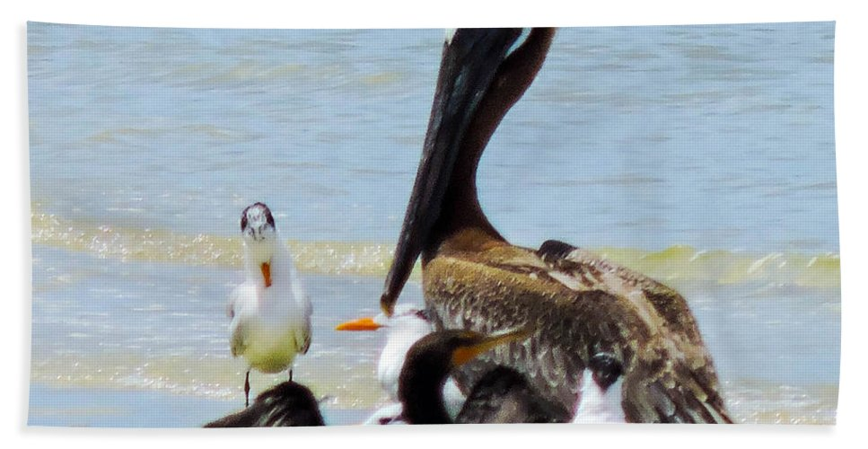 Shorebirds Hand Towel featuring the photograph Seafaring Trio by Marilee Noland