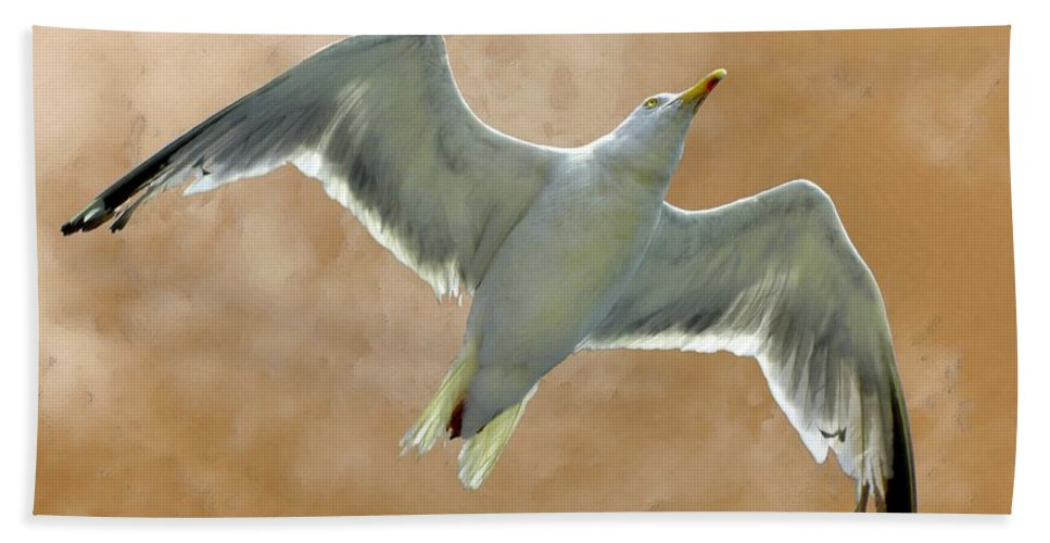 Seagull Hand Towel featuring the photograph Seagull In Flight 1 by Mark Sellers