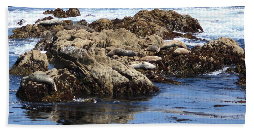 California Coast Hand Towel featuring the photograph Seal Island by Carol Groenen
