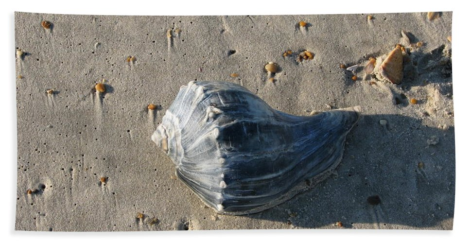 Seashell Hand Towel featuring the photograph Seashell by Stacey May