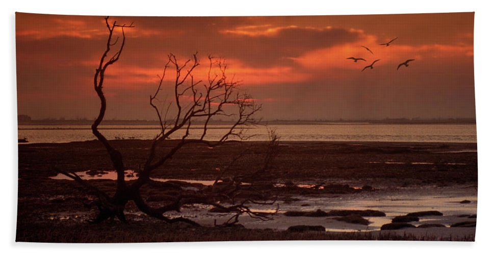 Clouds Bath Sheet featuring the photograph Seashore At Dawn by Geoff Crego