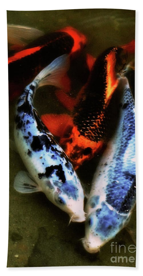 Koi Hand Towel featuring the photograph Secrets Of The Wild Koi 10 by September Stone
