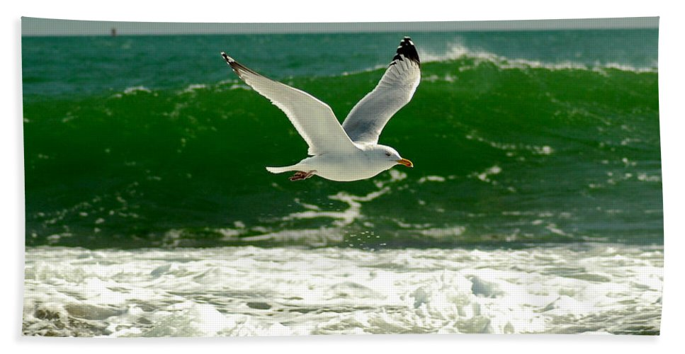 Sea Gull Hand Towel featuring the photograph See Gull by Greg Fortier