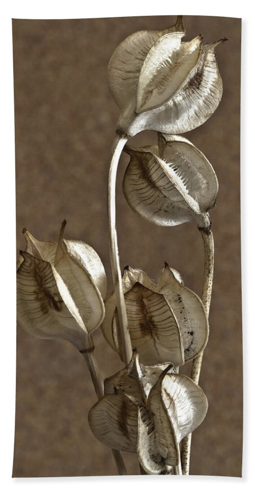 Seeds Hand Towel featuring the photograph Seed Pods Macro by Sandra Foster