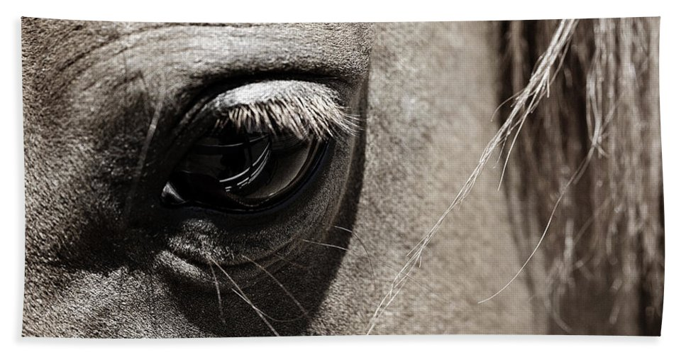 Americana Bath Towel featuring the photograph Stillness In The Eye Of A Horse by Marilyn Hunt