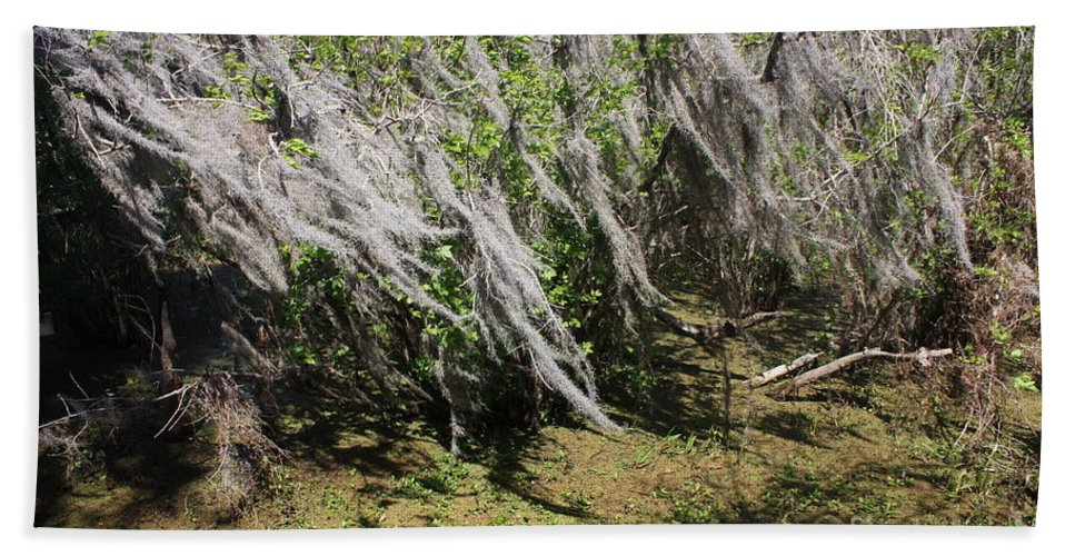 Windy Bath Sheet featuring the photograph Seminole Wind by Carol Groenen