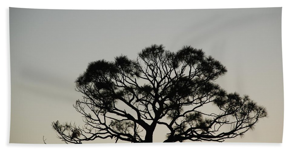 Tree Hand Towel featuring the photograph Senset Trees by Rob Hans