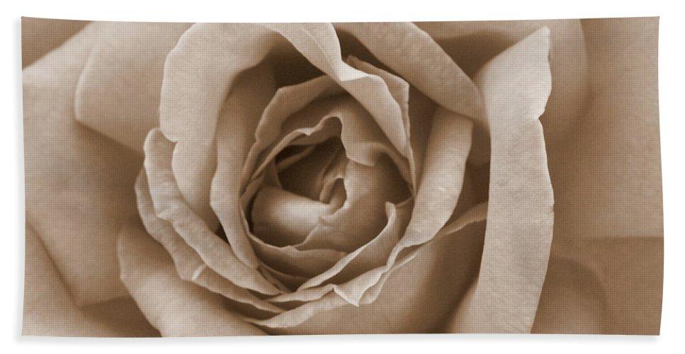 Sepia Bath Sheet featuring the photograph Sepia Rose by Carol Groenen