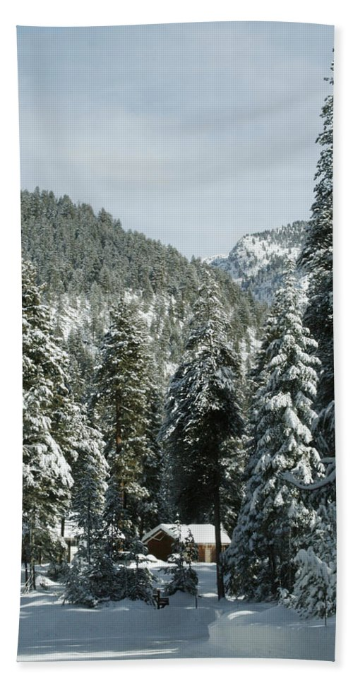 Sequoia Hand Towel featuring the photograph Sequoia National Park 7 by Masha Batkova