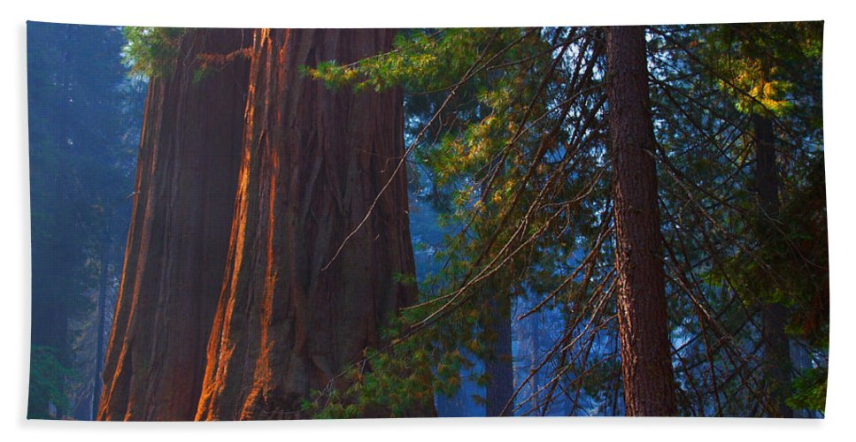 Sequoias Hand Towel featuring the photograph Sequoias On Blue by Kenneth Sponsler