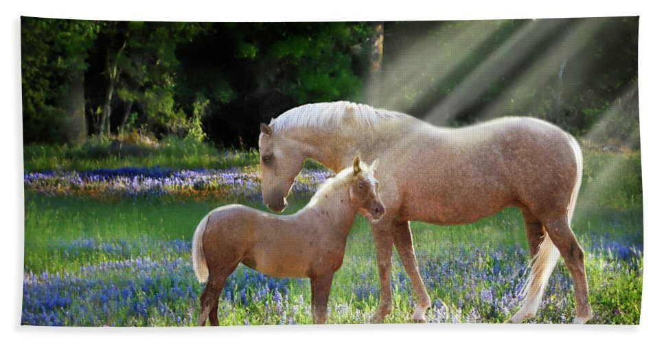 Horse Photography Hand Towel featuring the photograph Serenity by Melinda Hughes-Berland