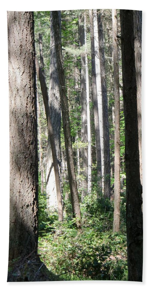Trees Bath Sheet featuring the photograph Shades Of Trees by Chris Colibaba
