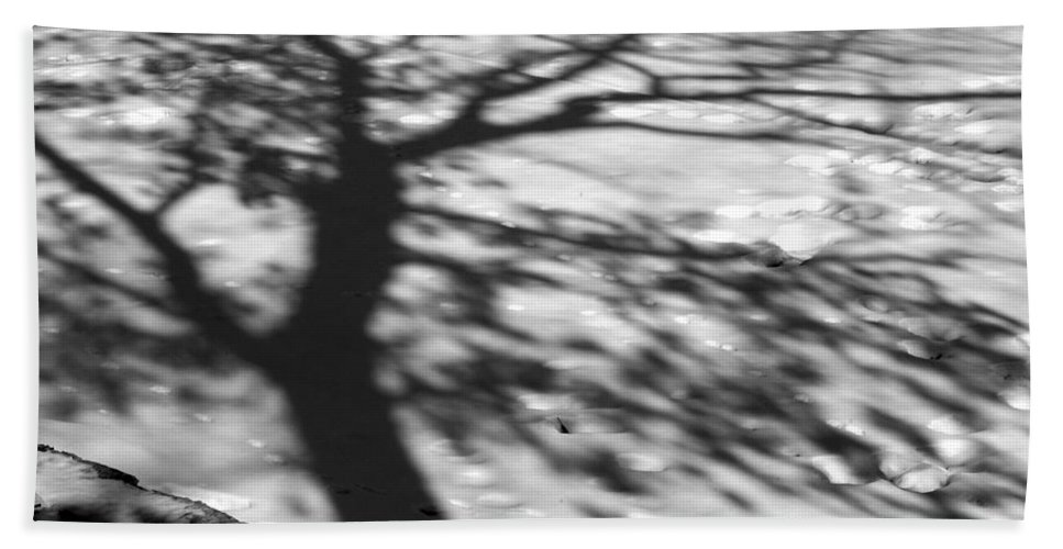 Shadow Bath Towel featuring the photograph Shadow Tree Herrick Lake Naperville Illinois by Michael Bessler