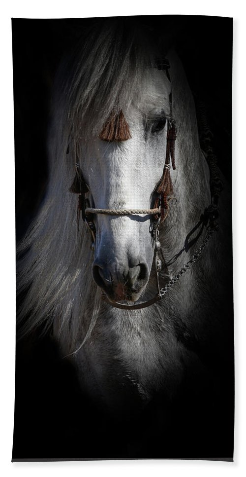 Andalusian Bath Sheet featuring the photograph Shadowed Andalusian by Athena Mckinzie