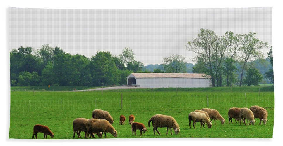 Bridge Hand Towel featuring the photograph Sheep And Covered Bridge by David Arment