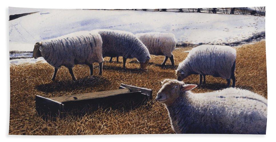 Sheep Bath Sheet featuring the painting Sheepish by Denny Bond