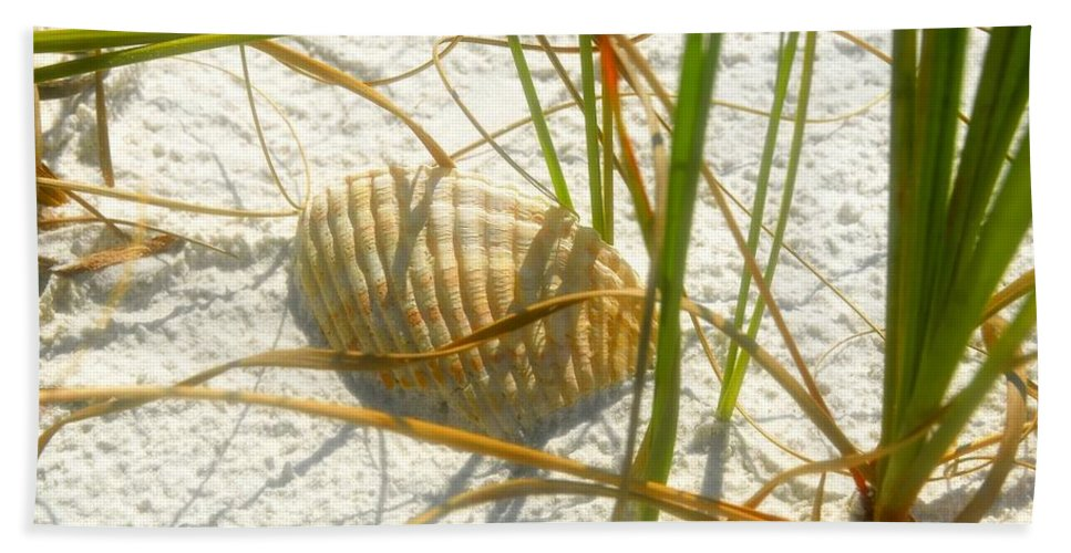 Sea Shell Bath Sheet featuring the photograph Shell And Beach by David Lee Thompson