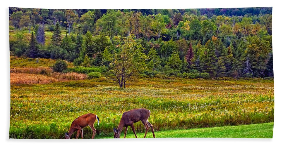 Canaan Valley Hand Towel featuring the photograph Shh... by Steve Harrington